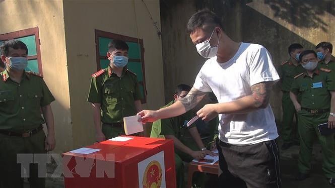 Cu tri Thanh Hoa, Quang Tri, Kien Giang, Long An nghiem tuc di bau cu hinh anh 2