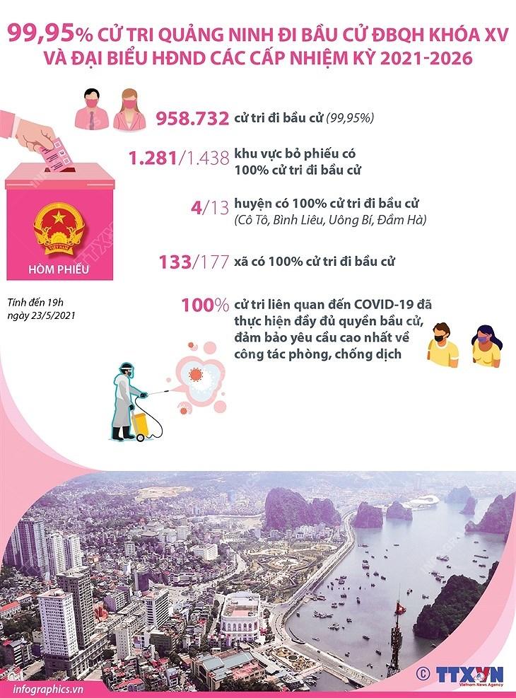 99,95% cu tri Quang Ninh di bau cu DBQH va dai bieu HDND cac cap hinh anh 1