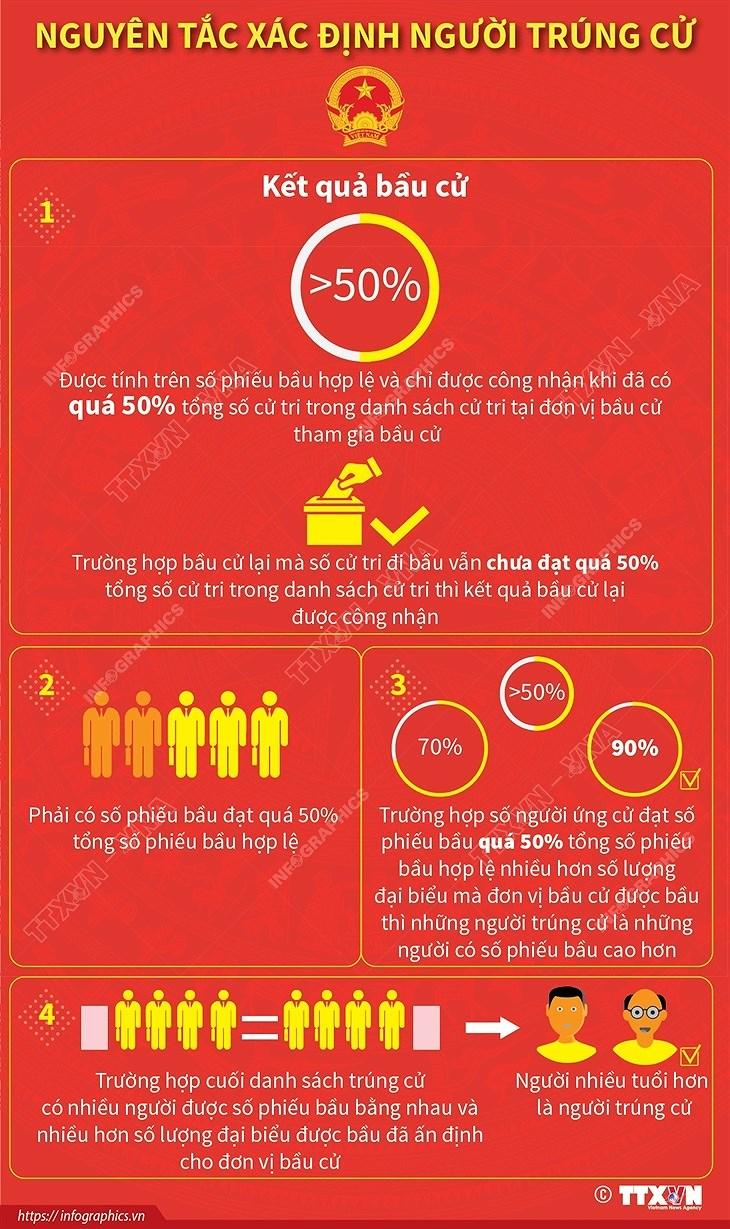 [Infographics] Nguyen tac xac dinh nguoi trung cu hinh anh 1