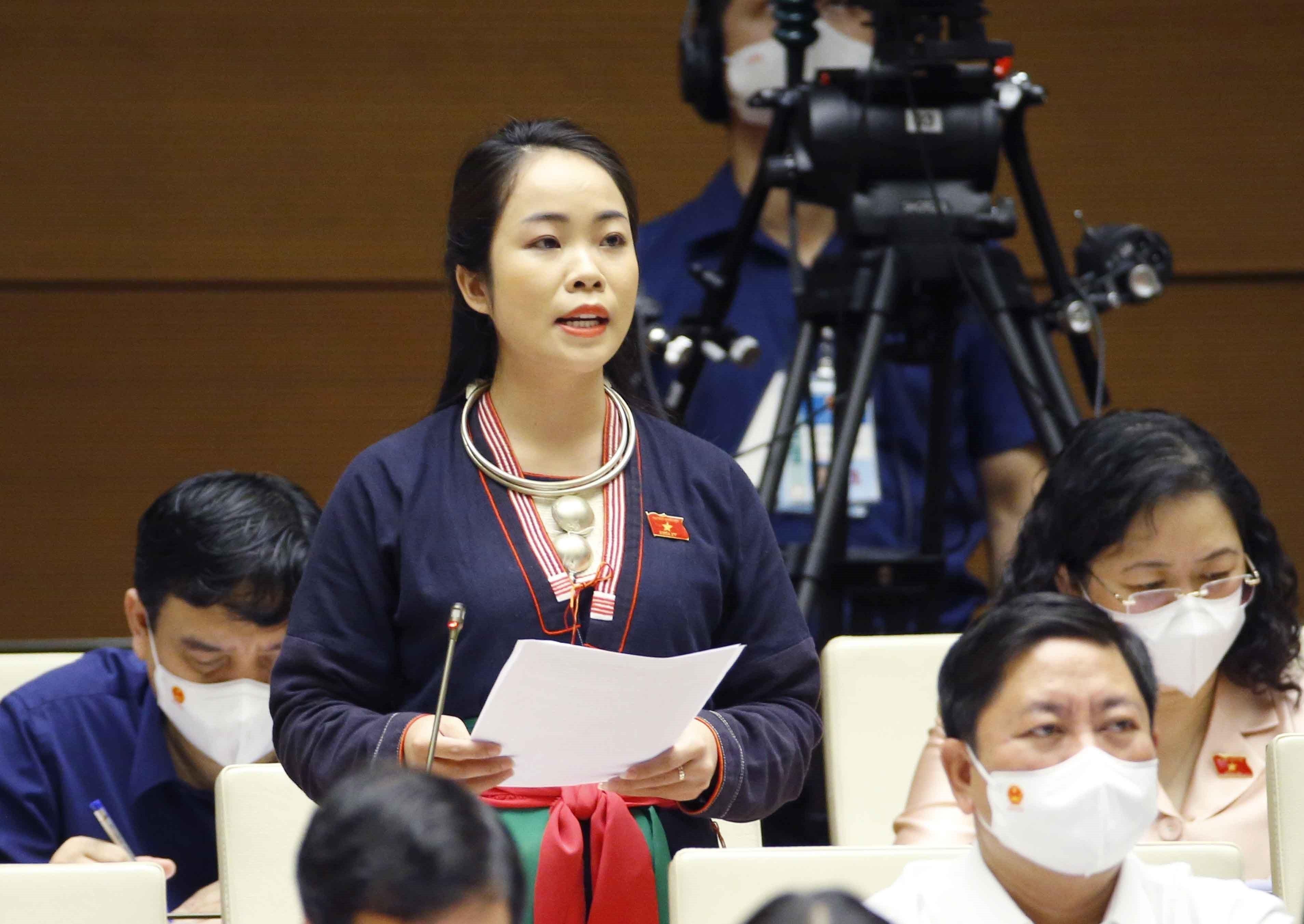 Legislators discuss two important national target programmes hinh anh 4