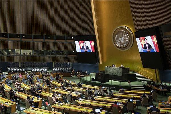 Presidency of UNSC in April marks a new milestone in Vietnam's diplomacy hinh anh 2