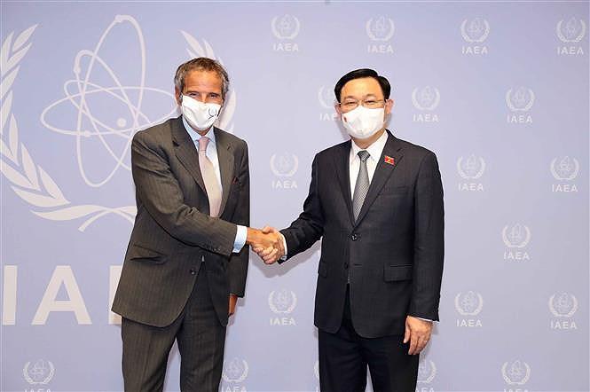 Top Vietnamese legislator meets with IAEA leader hinh anh 1