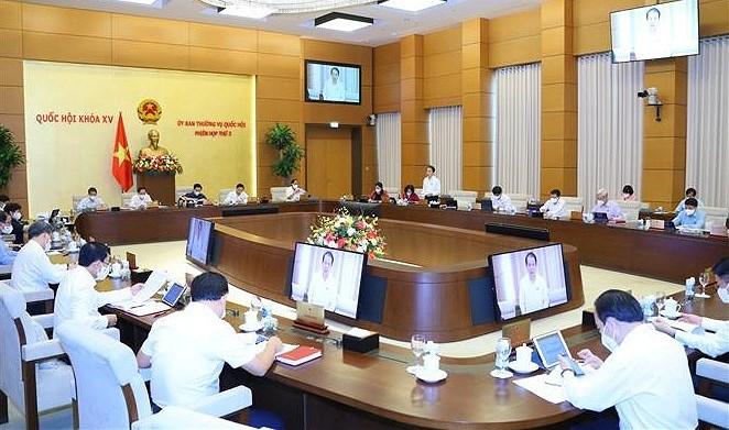 Le Comite permanent de l'AN examine le Programme national sur les minorites ethniques hinh anh 1
