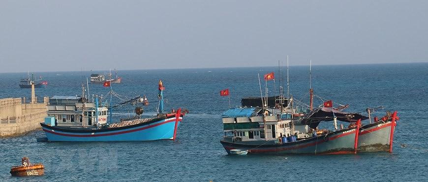 Le drapeau national sacre sur l'archipel de Truong Sa (Spratleys) hinh anh 5
